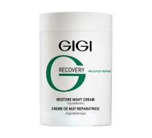 Recovery Restore Night Cream 250ml